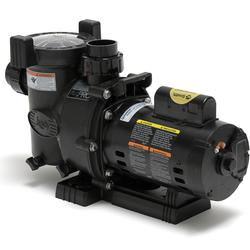 Jandy FloPro 1HP Pump