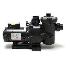 Jandy FloPro 2HP Pump Side View