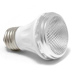 SpaBrite 60W Replacement Bulb