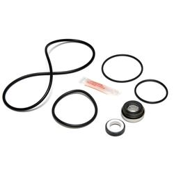 Jandy JHP/JHPU Pool Pump Repair Kit APCK1181