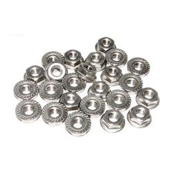 Raypak, Inc. Flange Nut Kit