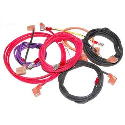 Raypak, Inc. Wire Harness, Millivolt