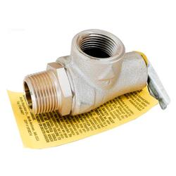Hayward Pool Products Inc. Valve, Relief