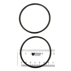 Hayward Pool Products Inc. O-Rings, Header Set of 2