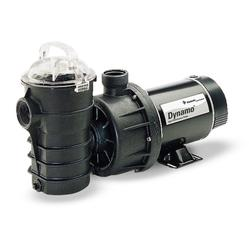 Pentair Dynamo Pool Pump