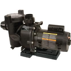 Jandy FloPro 3/4HP Pump
