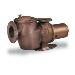 C-Series Pool Pump
