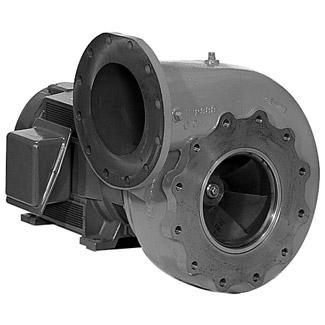 Berkely Bseries Pool Pump