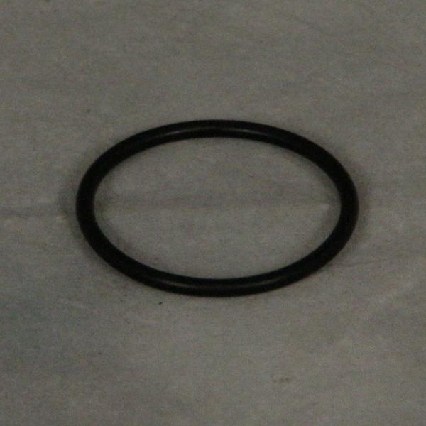 Style II Cleaning Head O-Ring
