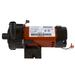 Waterway TinyMight 1/16HP Pump Side