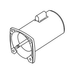 Pentair Pool Products (WG) Square Flange Motor