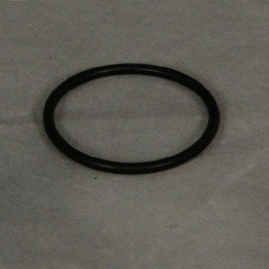 Gamma III Cleaning Head O-Ring