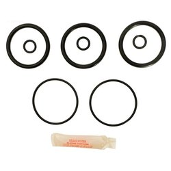 Anthony 2 in. Plastic Slide Valve Repair Kit APCK1068