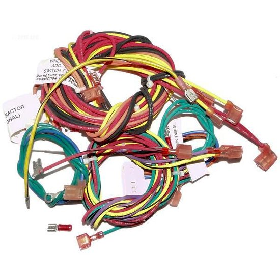 Raypak, Inc. Wire Harness, Iid
