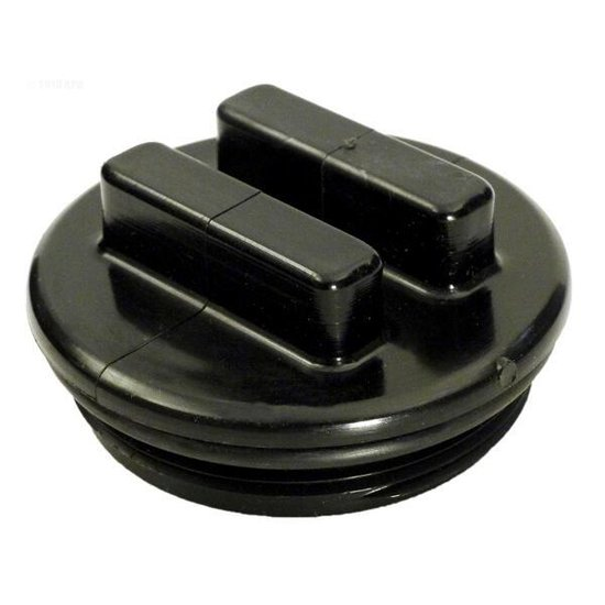 Waterway 2 in. Plug Assembly with O-Ring