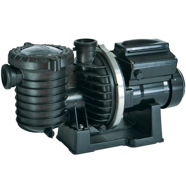 Sta-Rite IntelliPro VS-3050 Pump
