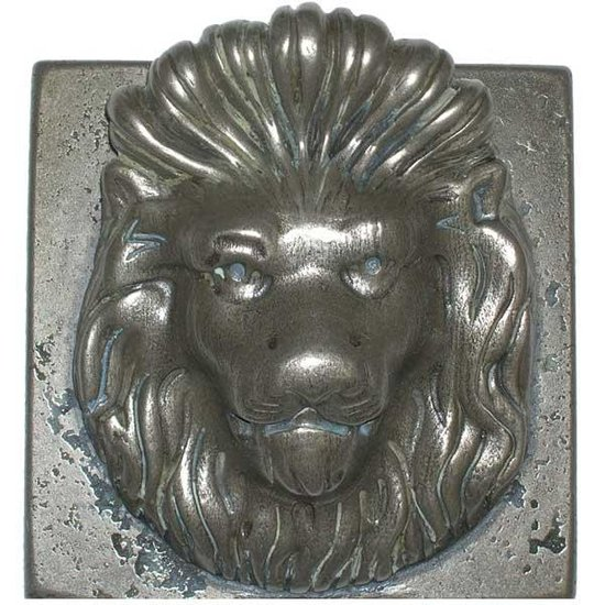 Pentair WallSpring Handhold Lion Gray