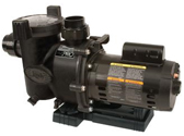 Jandy Single Double Amp Variable Pool Pumps