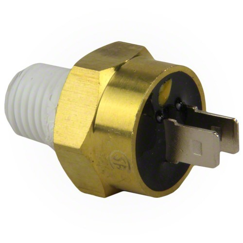 Details about Pentair 42002-0025S Automatic Gas Shut-Off Switch for  Max-E-Therm/MasterTemp