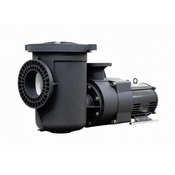Pentair EQ1000 Single Phase Commercial Plastic 10HP Pool Pump with Strainer, 230V (340238)